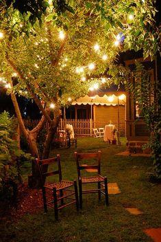 Sfeervol met die lichtjes!  Leuk voor een tuinfeest!