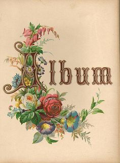 """Floral """"Album"""" page from Victorian album."""