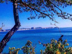 #Repost  Thanks! @ivan_trail21  Flipa mandarines del dia que fa  #naturapalamos #palamosonline #igerspalamos #igers_costabrava #worlds_beautiful_photos #world_nature #estaes_natura #total_mediterraneo #raconsde_girona #raconsde_catalunya #ig_mw_skies #ig_photo_world #sunrise_sunsets_badalona #sol_y_siluetas #discover_catalunya #fever_natura #fotopremios #fotosemana #h2o_natura #catalunya_alnatural #naturaleza_catalunya #meteobaixllobregat #meteobdncom #ig_monumentalworld_splash #costabrava…