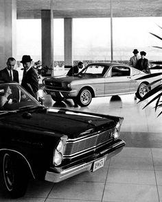 Mustang Ford Dealership