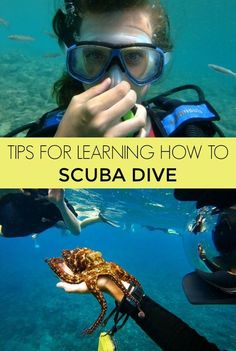 Tips for Learning How to Scuba Dive | Here's what to look for and what to expect in a scuba certification course. How to get your PADI Open Water scuba diving certification.