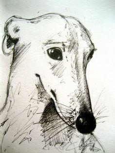 Dog Art, Dog Breed Whippet Pen & Ink facebook.com/michellecampbellart