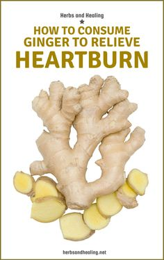Ingwer – Wirkung beim Abnehmen und auf die Gesundheit Lose weight with ginger and burn belly fat? Here we show you the ginger effect when losing weight. How To Relieve Heartburn, Heartburn Relief, Lose Weight, Weight Loss, Nutrition, Foods To Avoid, Burn Belly Fat, Eating Raw, No Carb Diets