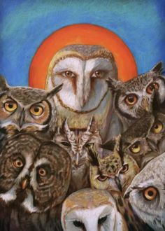 Don't have enough owl's in your life? No? Then you'll love a motley pack of owl's, leering at you as if you insulted their people! Art created by Maggie Stiefvater Maggie Stiefvater, Owl Art, Cool Paintings, Book Fandoms, Collie, Saints, Lion Sculpture, Statue, Bird