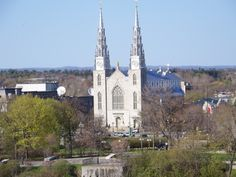 Notre Dame Cathedral Basilica of Ottawa