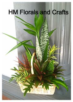 Various cut greens arranged to resemble lush vegetation!
