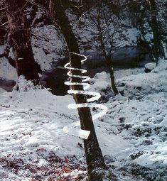 Land Art - Reconstructed Icicles around a tree - Andy Goldsworthy @ lhlefevre.com - Pixdaus