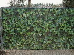 Elegant Ivy Fence Fabric