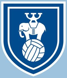 Coventry City's retro badge for the 2011-12 season. #1 reason why I bought a shirt.