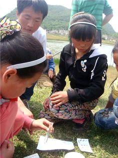 China (2013)