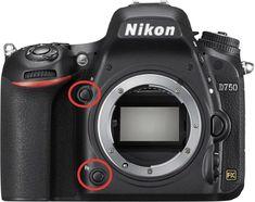 Nikon TIPP: 3. Verwendung der Funktionstasten (Fn) und (Pv)