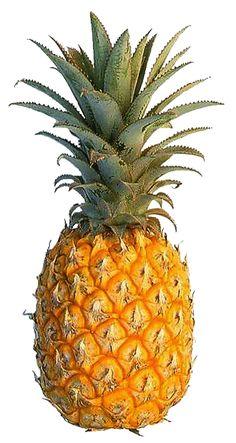 pineapple - Buscar con Google