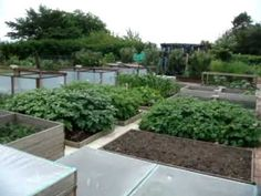 One of my favorite examples of raised beds