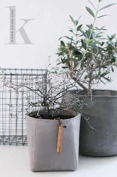 Concrete_interiors03