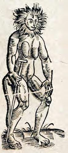 Man ape. From: Edward TOPSELL. The history of four-footed beasts and serpents, 1658.