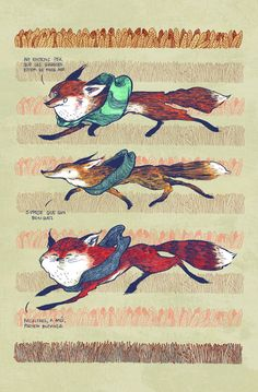 Foxes by Nuria Tamarit, via Behance