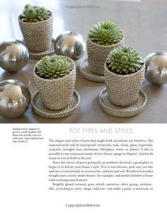 arrangements succulents - Google Search