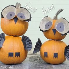 These owl pumpkins are a hoot!  #halloween #pumpkins