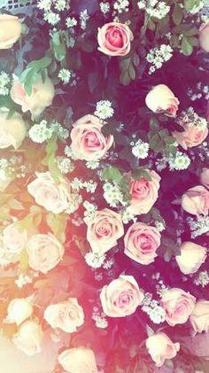 Flores ♡♡