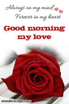 Good morning sweetheart yes you are always on my mind and in my heart have a good day...LUSM...@