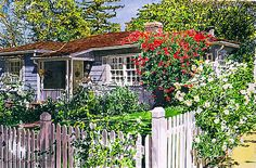 Rose Cottage  by David Lloyd Glover