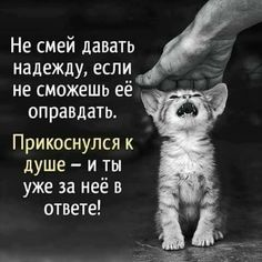 Wisdom Quotes, Qoutes, Life Quotes, Russian Quotes, Laws Of Life, Perfection Quotes, Love You, My Love, Cool Words