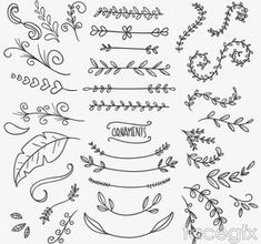 35 flowers and branches to design vector