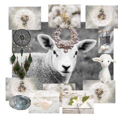 The Scottish Sheep by mariannemerceria on Polyvore featuring art, vintage and integrityTT