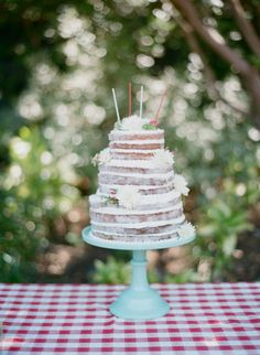 Naked cake for a vin