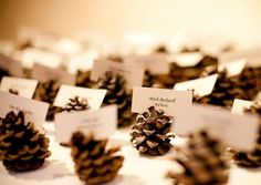 69 Trendy wedding ideas on a budget centerpieces pine cones October Wedding, Autumn Wedding, Diy Wedding, Dream Wedding, Wedding Ideas, Trendy Wedding, Wedding Advice, Wedding Colors, Wedding Gifts
