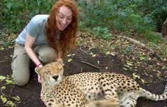 Volunteer in South Africa - Pre-Vet Wildlife Internship Volunteer In Africa, Beef Cattle, Volunteer Programs, The Eighth Day, Large Animals, Dream Job, Pet Health, Livestock, Fleas
