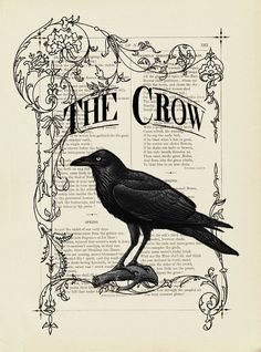 This says The Crow with a pic of a Raven not a crow. Why?