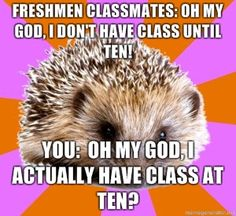 The Homeschooled Hedgehog