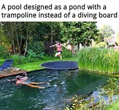 This smaller swim pond is designed to entertain the whole family!For your Michigan Pond Needs call Waterpaw 231-439-0067 www.waterpaw.net @waterpawllc #FrogBlog