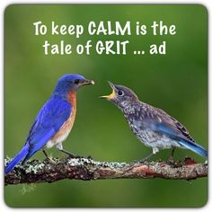 To keep #CALM is the tale of #GRIT ... ad