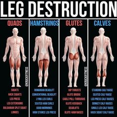 Build Bulging Bigger Legs Fast With This Workout On leg day, it seems to become a popular thing to make quads a priority because that [. Fitness Workouts, Gym Workout Tips, Butt Workout, At Home Workouts, Fitness Tips, Fitness Motivation, Leg Press Workout, Calf Muscle Workout, Fitness Memes