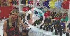 Wholesale Dog Clothes & Pet Supplies | Parisian Pet
