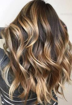 Balayage Ombre Clip in Remy Human Hair Extensions #2/6T2/24