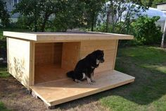 The market is flooded with many products assuring several advantages. Which one should you rely on? The market is flooded with many products assuring several advantages. Which one should you rely on? Build A Dog House, Dog House Plans, Cool Dog Houses, Backyard Sheds, Dog Runs, Outdoor Dog, Animal House, Large Dogs, Dog Owners