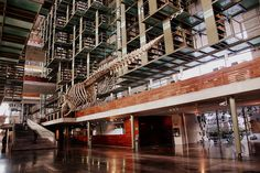 Go take a look inside Mexico City's massive, gorgeous library and be amazed.