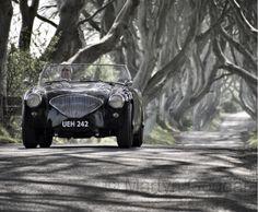 1955 Austin Healey 100M Le Mans Roadster
