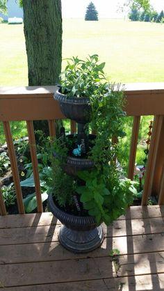 Herb garden in tiered planter