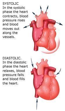 Nurse Discover 18 Tremendous Hypertension Home Ideas Portentous Ideas: Blood Pressure Chart Life blood pressure remedies study. Medical Facts, Medical Information, Cardiac Nursing, Nursing Mnemonics, Nursing Degree, Nursing School Notes, Nursing Schools, Lpn Schools, Medical School