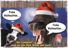 Wir wünschen ein frohes und besinnliches Weihnachtsfest  www.flikka.de