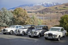 Vintage Pair Of Daimler Wedding Cars In Queenstown New Zealand