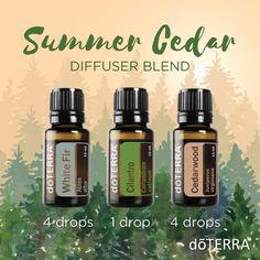 Start as a dōTERRA WELLNESS Advocate or buy dōTERRA products as a Wholesale Member doTERRA Essential Oils Summer Cedar Diffuser Blend