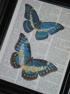 Butterfly Art Print Butterfly Dictionary Art Print Book Page Upcycle Wall Art 8 x 10 Blue Yellow Natural History. $8.00, via Etsy.