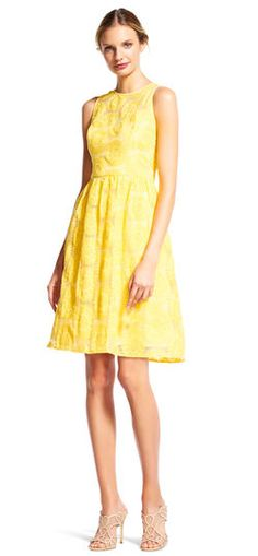 Adrianna Papell   Daisy Embroidered Fit and Flare Dress with Sheer Neckline
