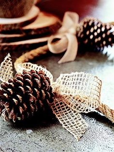 Decorate a buffet table with this simple garland. Use heavy-gauge, gold wire to attach pine cones to rope. Tie a bow made from coarsely woven hemp or cotton ribbon around the rope at the top of each pine cone to hide the wire. (Optional: Add a little glitter to the pine cones before assembling the garland to catch the light.)