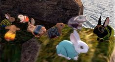 This weekend Second Life bunnies will starve and die.